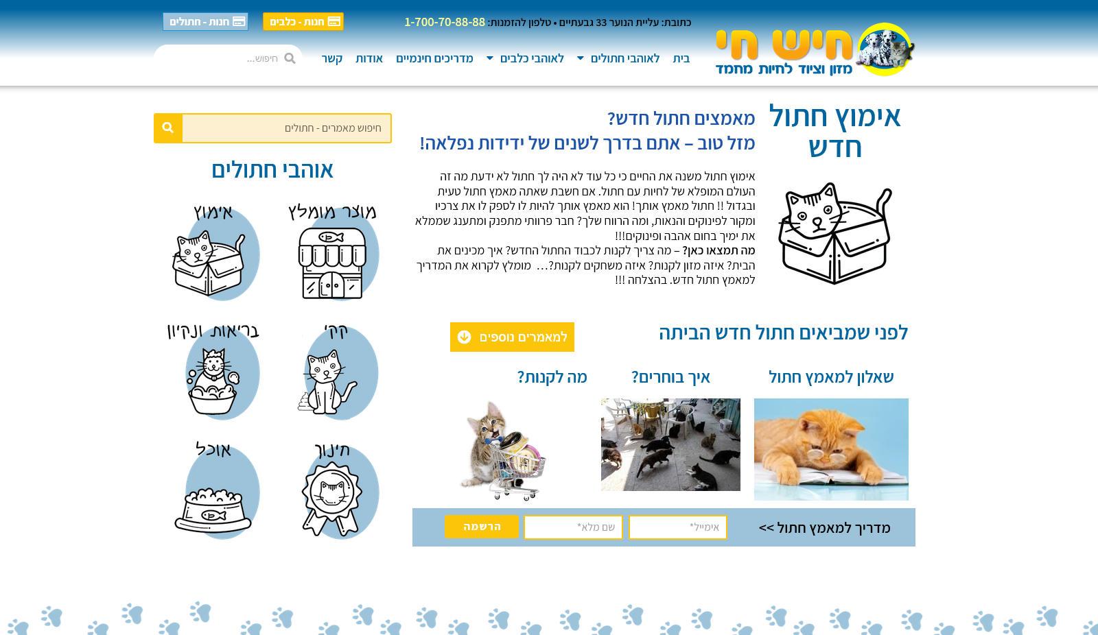 hishhai-site-category
