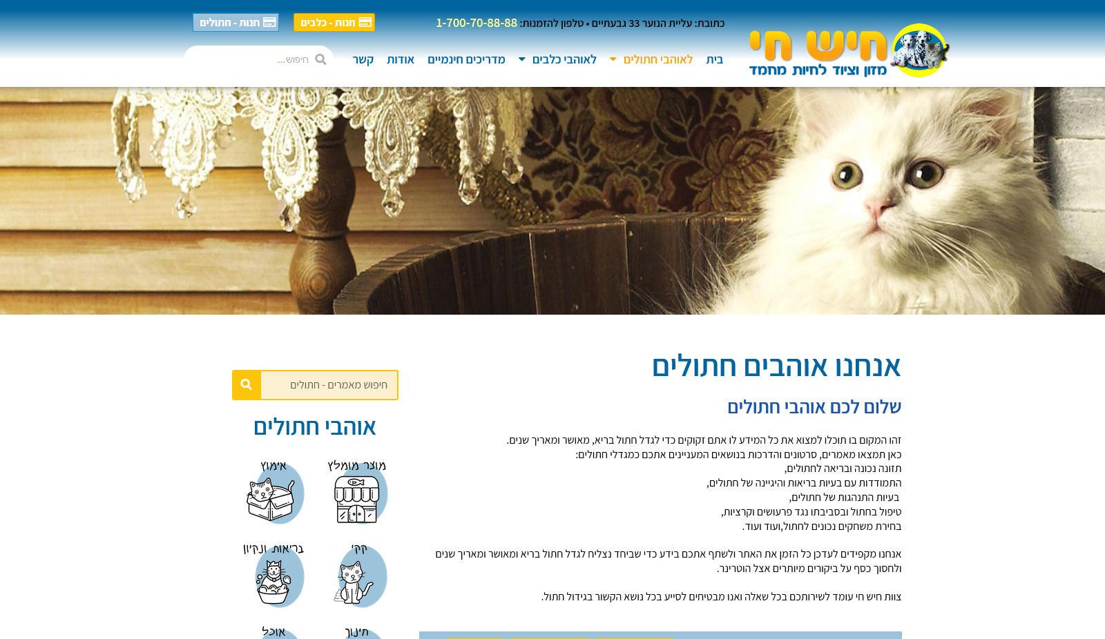 hishhai-site-cats