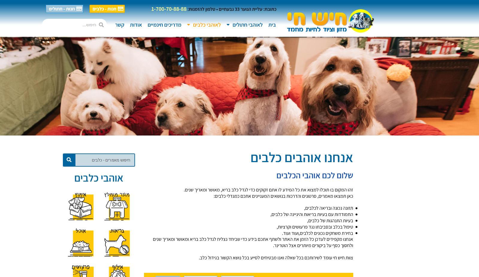 hishhai-site-dogs