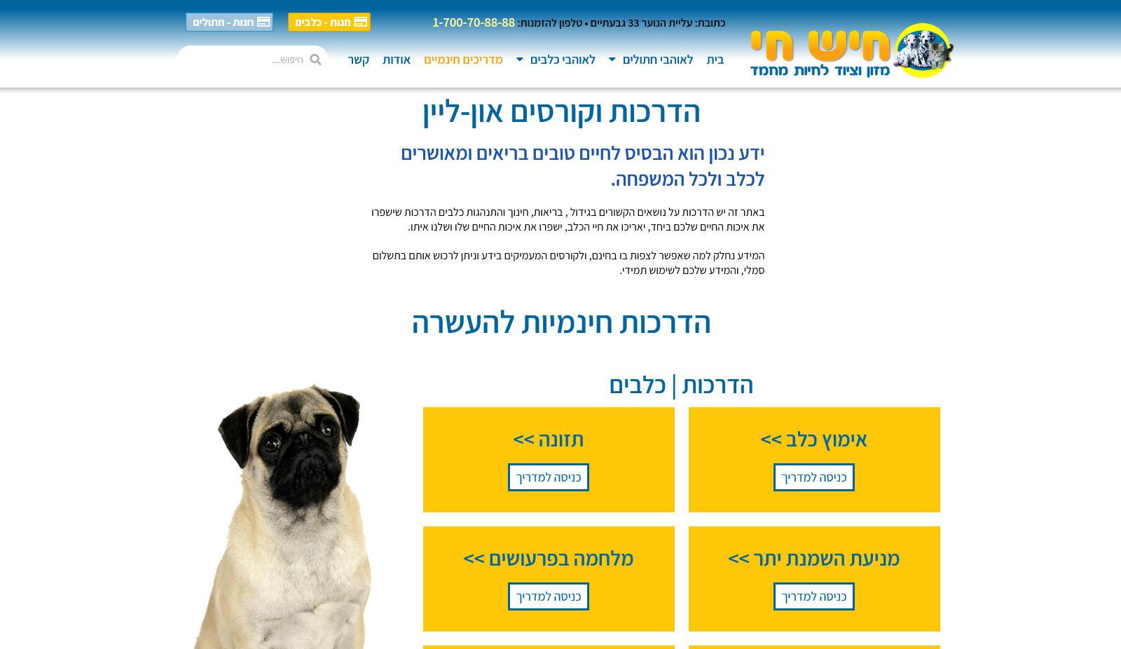 hishhai-site-info
