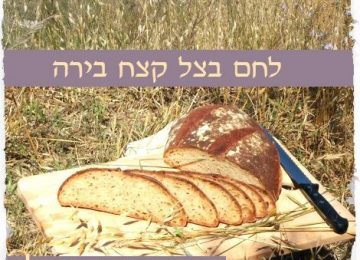 מה הקשר בין רב-מסר ללחם?